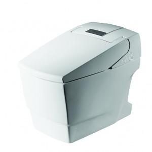 Intelligent Toilet C21127W-3A